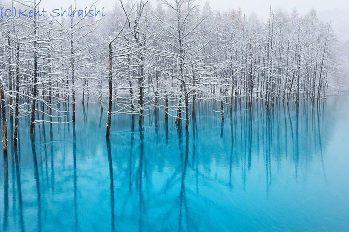 Натуральный цвет вод пруда на Хоккайдо.