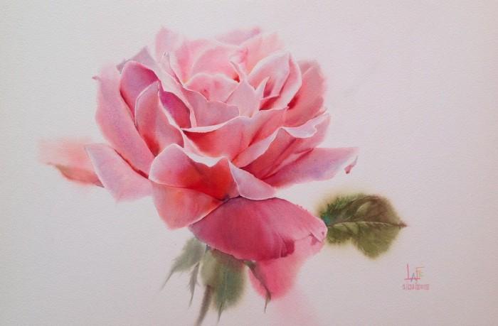 розы картины La Fe - 01