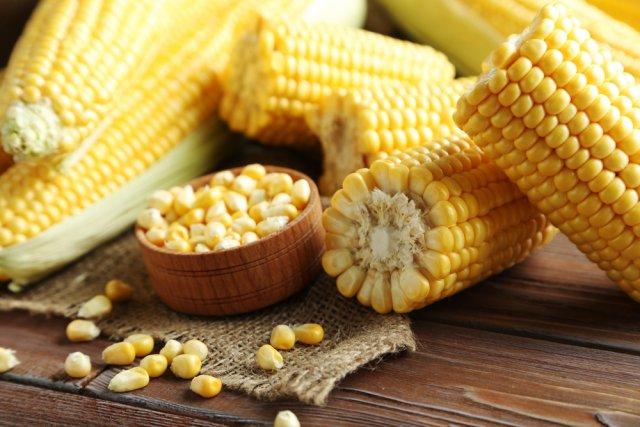 Выращивание кукурузы на даче – раскрываем секреты высокого урожая