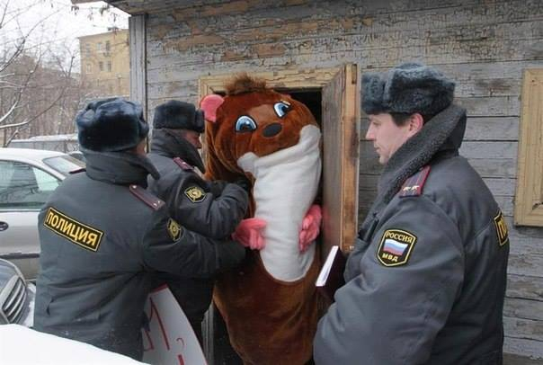 Такое возможно только в России маразмы, юмор, россия