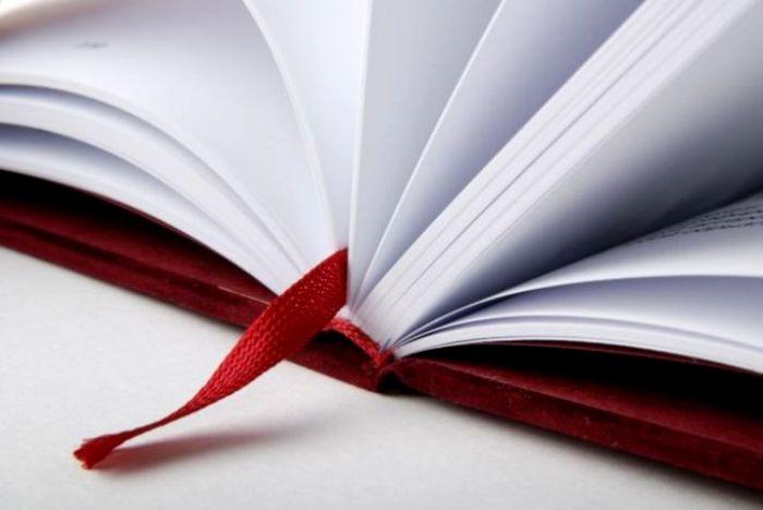 Не все закладки можно назвать только «закладками». /Фото: orion-v.com