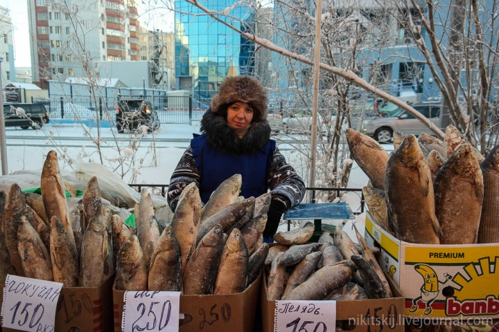Stroganina03 Что такое настоящая якутская строганина