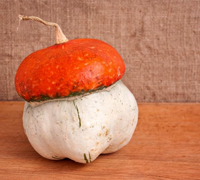 Тыква декоративная Грибок, или Чалмовидная