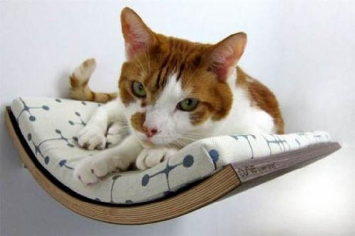curve-pet-bed-from-akemi-tanaka