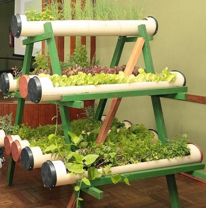 Эта идея для любителей свежей домашней зелени.