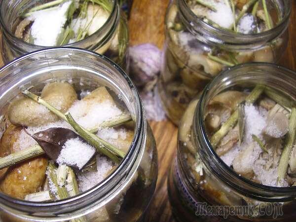 ботулизм грибы маринованные фото
