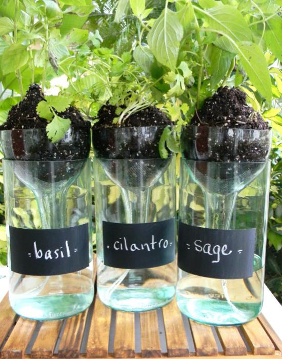 Горшочки для цветов из винных бутылок с источниками постоянной влаги.