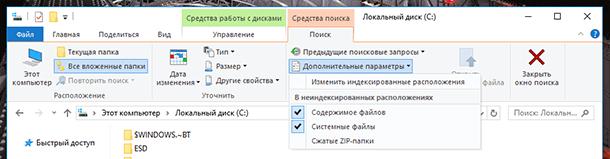 Локальный диск C:. Средства поиска / Дополнительные параметры