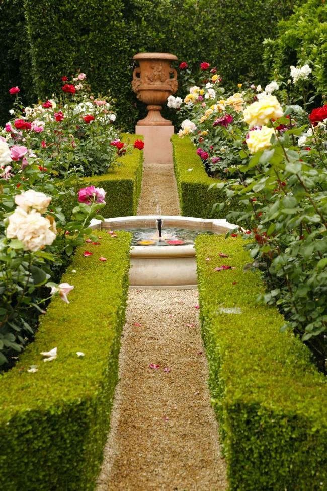 """Интересный факт: в английском языке """"English rose"""" является устоявшимся выражением и означает девушку классической английской красоты (темные волосы, светлая кожа, зеленые глаза). А разнообразие красоты роз Остина вовсе не ограничивается какими бы то ни было признаками, кроме самых общих"""