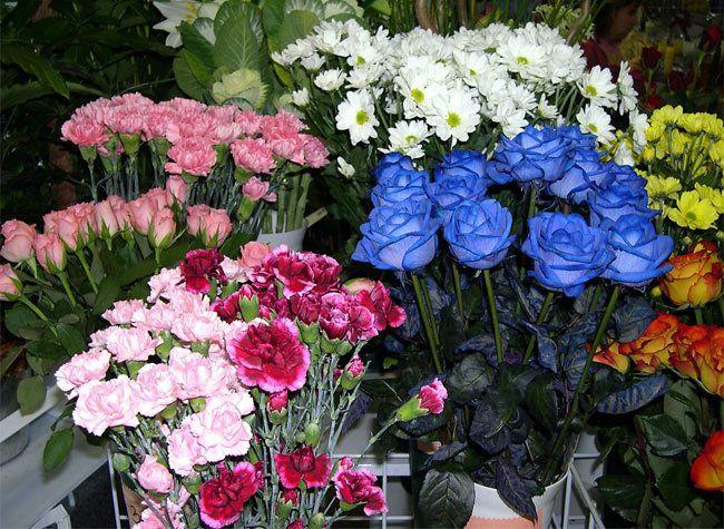 беларусь, праздник, 8 марта, цветы, девушки