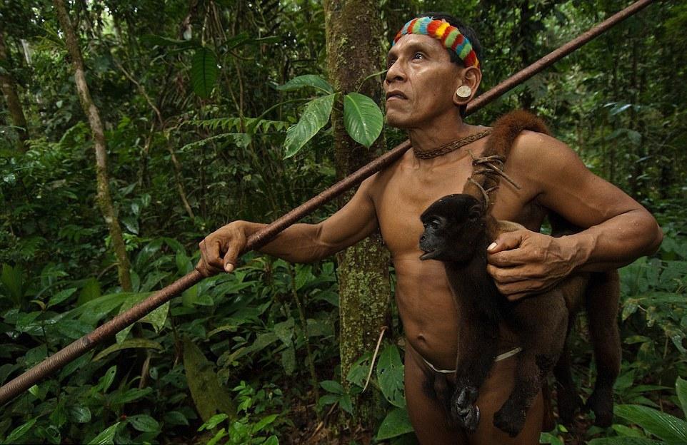 племя амазонок картинки подробно рассказано