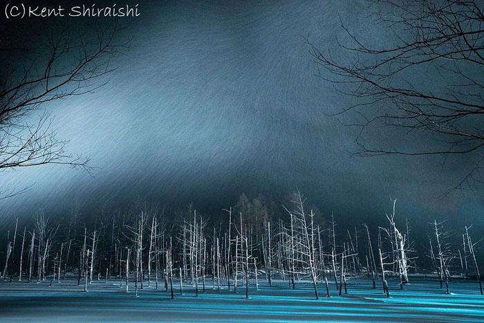 Светящийся пруд во время падения снега.