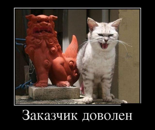 Мяу!!! С надписями! Мяу, демотиваторы, животные, кошки, мими