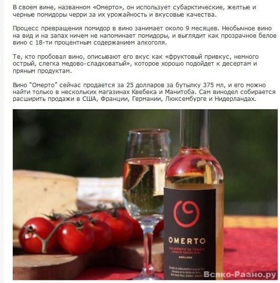 Вино из помидоров (7 фото)