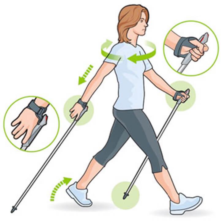 Скандинавская ходьба — инструкция и техника ходьбы
