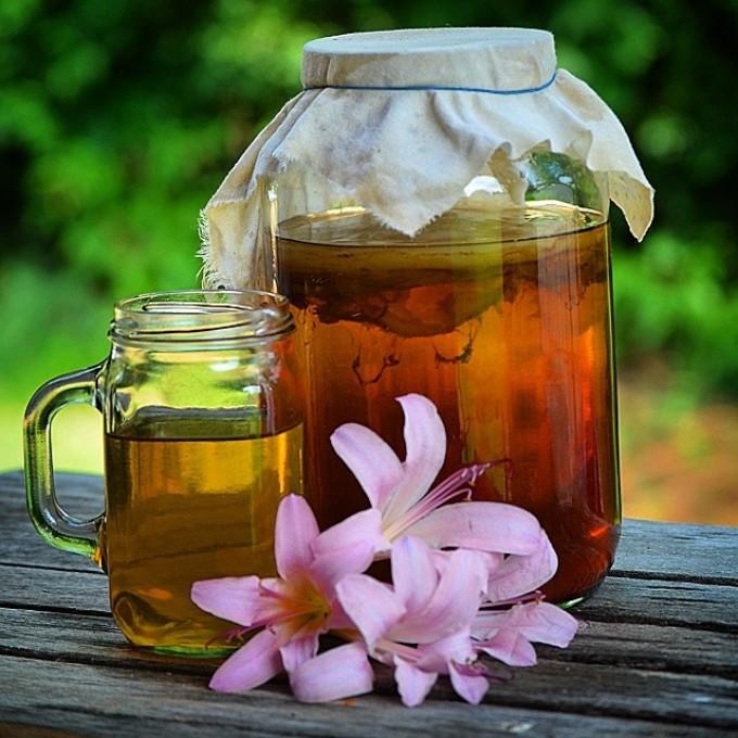 Чайный гриб способствует похудению