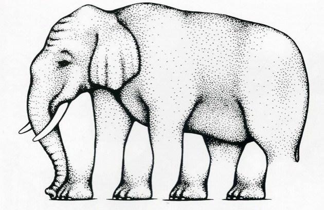 оптические иллюзии, ноги слона