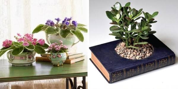 Необычные способы посадить растения