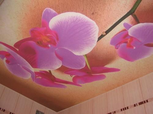 Бесшовные натяжные потолки тканевые с фотопечатью