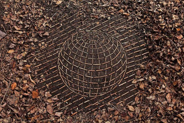 «Выпуклая» сфера, умело созданная с помощью веток, плодов и листьев.