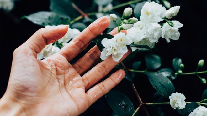 Ароматерапия: запахи, которые взбодрят, успокоят и подарят радость (фото 8)