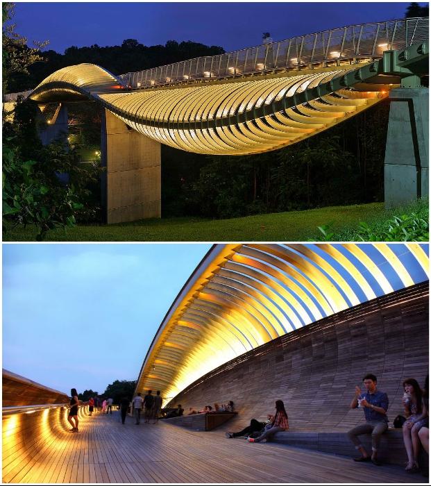 Внутри моста-змеи Henderson Waves можно покататься, прогуляться и просто полежать на оригинальных скамейках (Сингапур).