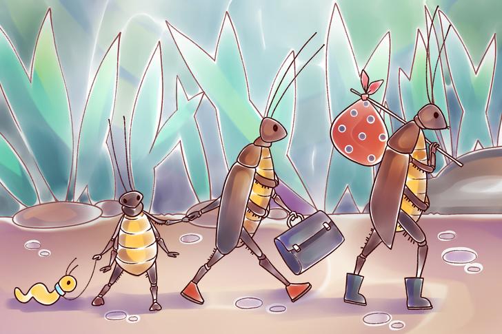 Картинки по запросу тараканы ушли