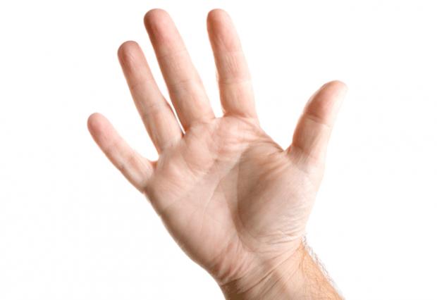 Пять пальцев - пять приемов пищи белки, диета, жиры, здоровое питание, здоровые, питание, продукты, углеводы