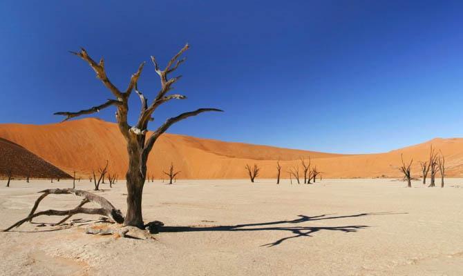 засуха в Ливии, Интересные факты о Странах Мира