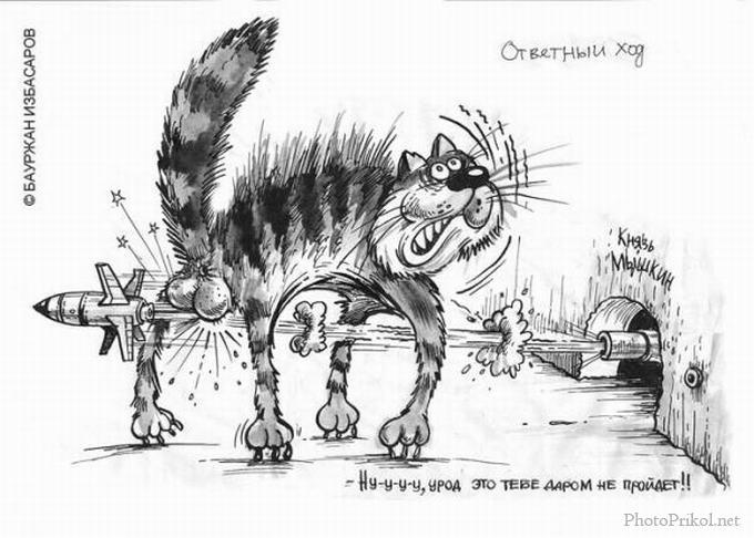 Немного карикатур и весёлых рисунков (52 фото)