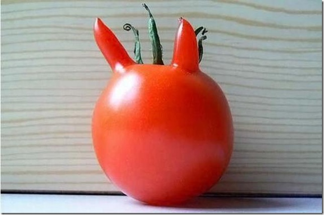 unusual-fruit-and-vegetables09