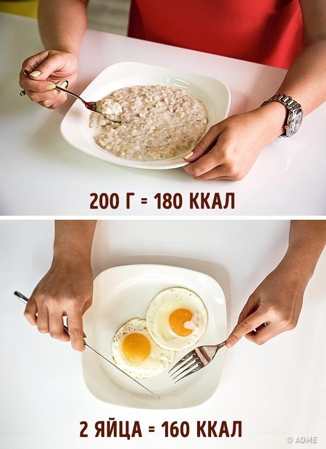 Сколько В День Можно Яиц При Диете. Сколько яиц можно есть в день, чтобы похудеть?