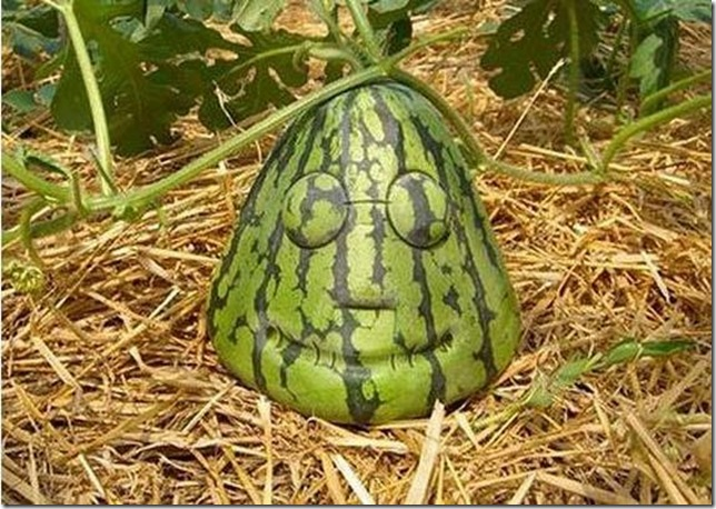 unusual-fruit-and-vegetables01