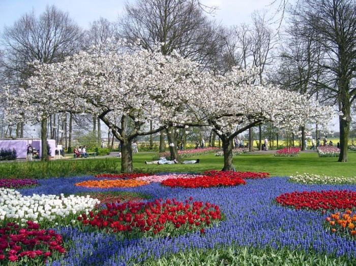 Keukenhof, голландский парк цветущей весны
