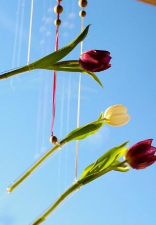 Тюльпаны в оформлении дома