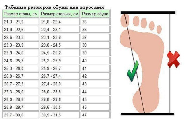 Соответствие длины стопы к размеру стельки и обуви для взрослых