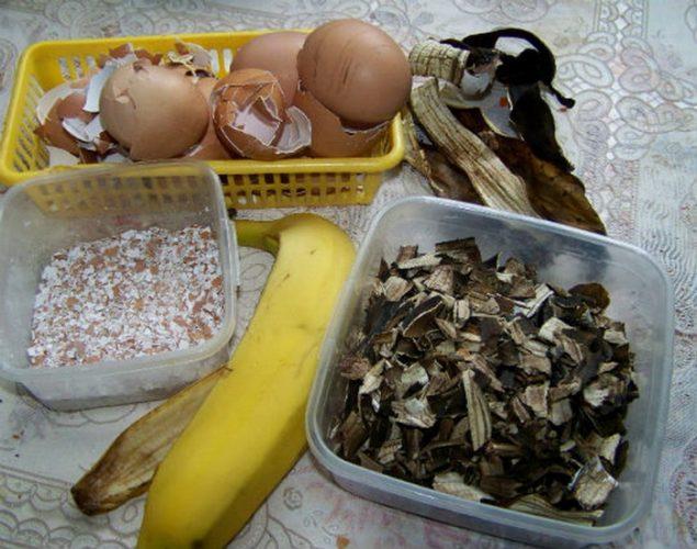 Как подкормить цветы банановой кожурой