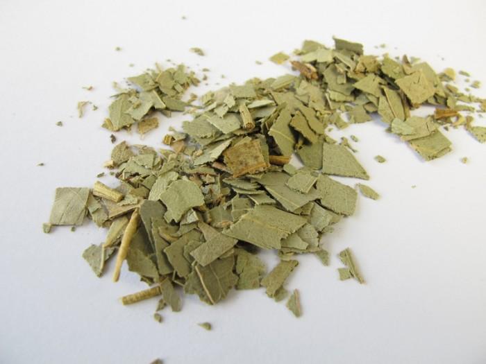 Eukalyptusblätter, Eucalypti folium