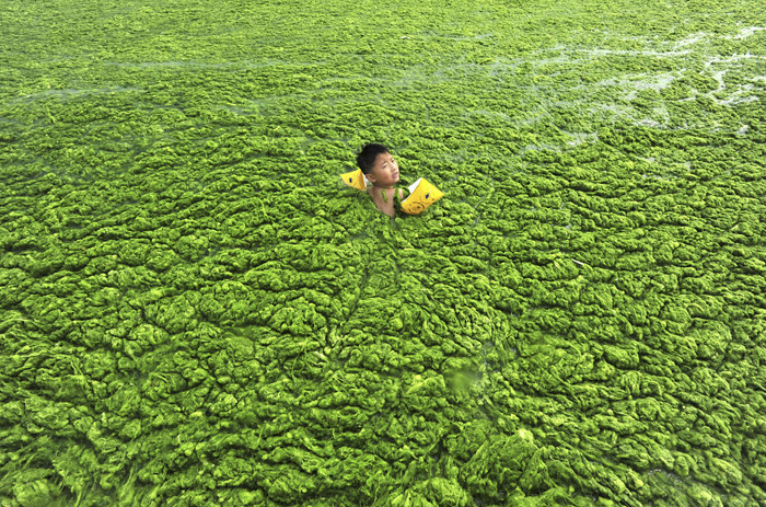 Маленький мальчик учится плавать.