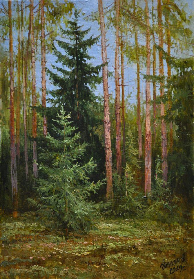 Ðа данном иÐображении может находитьÑÑ: дерево, раÑтение, небо, на улице и природа