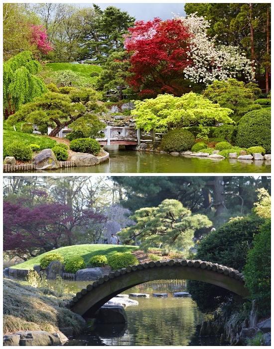 Территория ботанического сада является самой восхитительной достопримечательностью Нью-Йорка (Brooklyn Botanic Garden). | Фото: tournavigator.pro.