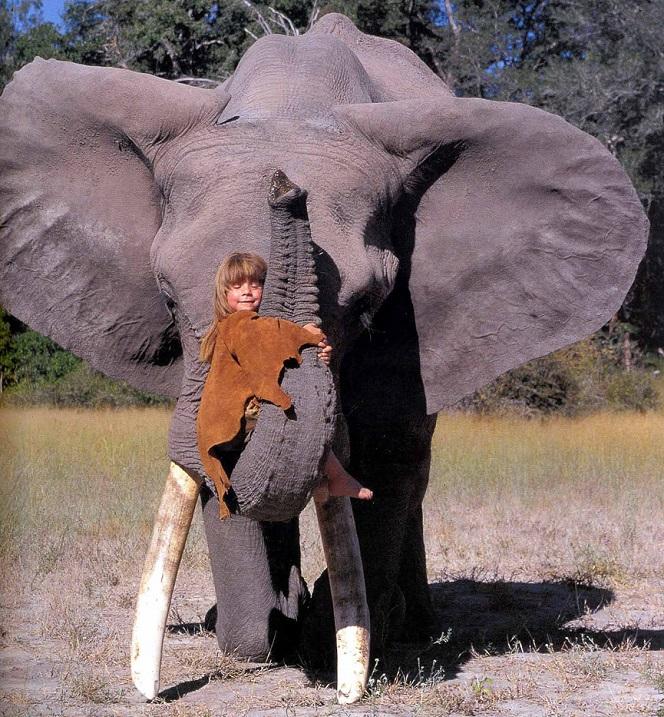 Типпи Дегре на хоботе слона. Девочка-Маугли в Африке. Фото
