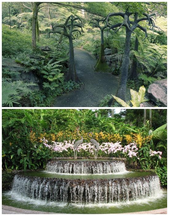 Сингапурский ботанический сад ежегодно посещает несколько миллионов туристов (Singapore Botanic Gardens). | Фото: lifter.com.ua.