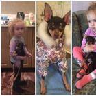 Из первых уст - чему собака научила мою дочь?