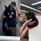 18 мягких комочков умиления, которые в итоге выросли шерстными монстрами