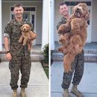 14 собак, которые выросли слишком быстро