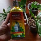 Укоренители для орхидей