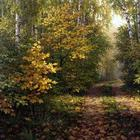 Осень в творчестве Александра Игнатьева