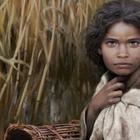 Учёные восстановили лицо девочки, жившей 6000 лет назад, благодаря «жевательной резинке»