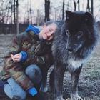 Волкособы: нежные гиганты, которые очень любят обнимашки